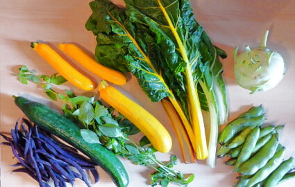 400g Dicke Bohnen - 250g Lila Bohnen - 200g Mangold - 30g Basilikum - 1 Kohlrabi - 1 Salatgurke - 1kg Zucchini (hier ca. 600g abgebildet) [27. Juli]