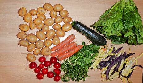 1,2 kg Kartoffeln - 250 g Möhren - 400 g Zucchini - 250 g Tomaten - 1 Kopfsalat - 400 g Bohnen - Basilikum nach Bedarf [10. August]