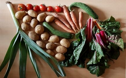 1,2 kg Kartoffeln - 250 g Tomatten - 200 g Mangold - 180 g Porree - 250 g Zucchini - 300 g Möhren - 1 Gurke [17. August]