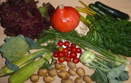 1kg Kartoffeln - 1 Brokkoli - 2 Maiskolben - 1 Kohlrabi - 350g Tomaten - 300g Zucchini - 1 Kopf Salat - 1 Kürbis - Mangold und Babyfenchel nach Wahl [7. September]