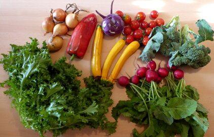 1 großer Kopfsalat - Paprika - 1 Kohlrabi - Zwiebeln - Radischen - Brokkoli - Zucchini - Tomaten (Gewichtsangaben leider nicht notiert) [14. September]
