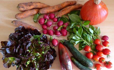 650 g Karotten - 275 g Tomaten - 300g Zucchini - 300 g Radischen - 1 Kürbis - 1 zarter Salat - 1 Paprika - 1 Bund Basilikum [ 21. September]