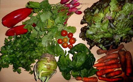 700g Möhren - 300g Paprika - 100g Tomaten - 1 Kohlrabi - 1 Kopfsalat - 200g Radischen - Spint und Kräuter nach Wahl [19. Oktober]