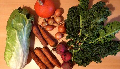 350g Grünkohl - 700g Karotten - 250g Zwiebeln - 400g Rote Beete - 1 Kürbis (...es gab auch viel größere zur Auswahl!) - 1 Zuckerhut-Salat - 15g Koreander (hier nicht auf dem Foto) [23. November]