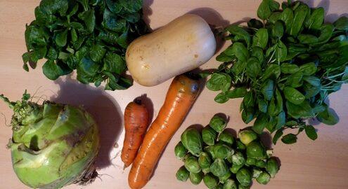 1 Kohlrabi - 1 Butternut Kürbis - 600g Karotten - 300g Rosenkohl - 60g Feldsalat - 100g Spinat [30. November]