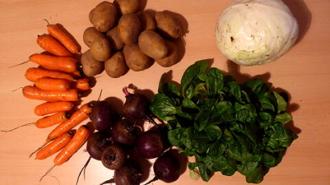 1000g Kartoffeln - 700g Rote Beete - 600g Karotten - 100g Feldsalat - 1 Weißkohl [7. Dezember]